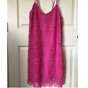 NWT Magenta Gianni Bini Floral Appliqué Dress